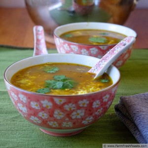 Thai Turkey Cold Busting Hot and Sour Egg Drop Soup