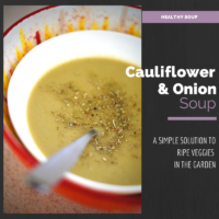Sweet an Spicy Pureed Cauliflower Soup