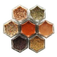 CARNIVORE SPICES | 7 Organic Spice Rubs for Steak, Pork & Poultry