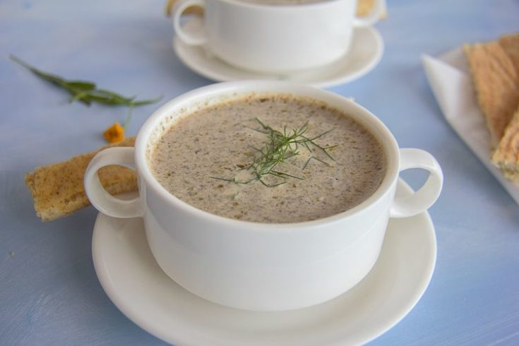 Keto Mushroom Tarragon Soup